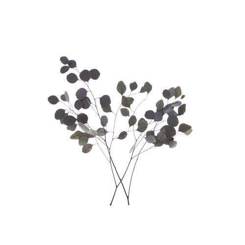 Kunstpflanze »Eukalyptus«