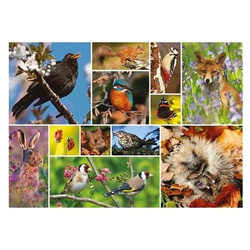 Otter House Puzzle »RSPB Great British Wildlife 1000 Teile Puzzle