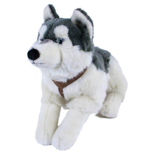Teddys Rothenburg Kuscheltier (Hund groß Husky 60 cm Stoffhusky Plüschhusky, Plüschtiere, Plüschhunde groß, Stoffhund, Stofftiere, Husky aus Plüsch)