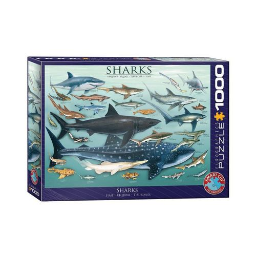 EUROGRAPHICS Puzzle »EuroGraphics 6000-0079 Haie 1000 Teile Puzzle«, 1000 Puzzleteile, bunt