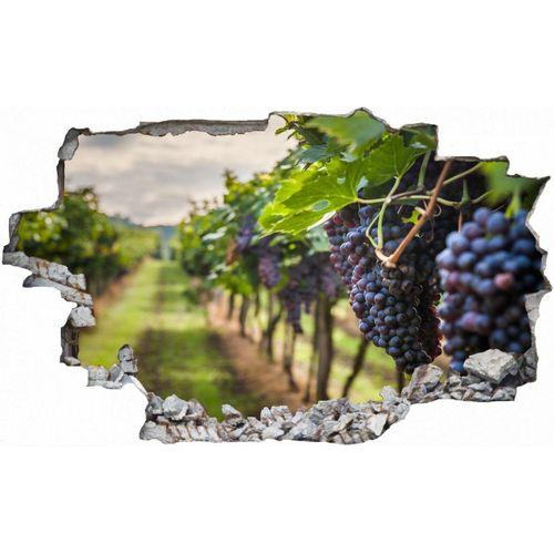 DesFoli Wandtattoo »Trauben Weintrauben Anbau Weinreben C2422«