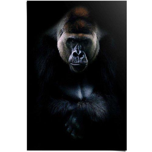 Reinders! Poster »Gorilla Gorilla«, (1 Stück)