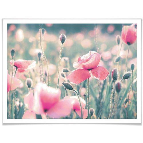 Wall-Art Poster »Mohnblumen«, Blumen (1 Stück), bunt
