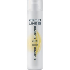 Profi Line Haarpflege Aufbau Shampoo 300 ml