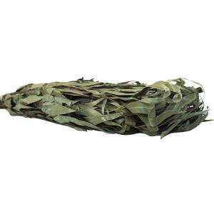 Eukalyptusblätter, Zur Entspannung der Muskulatur, 1 Eukalyptusquast