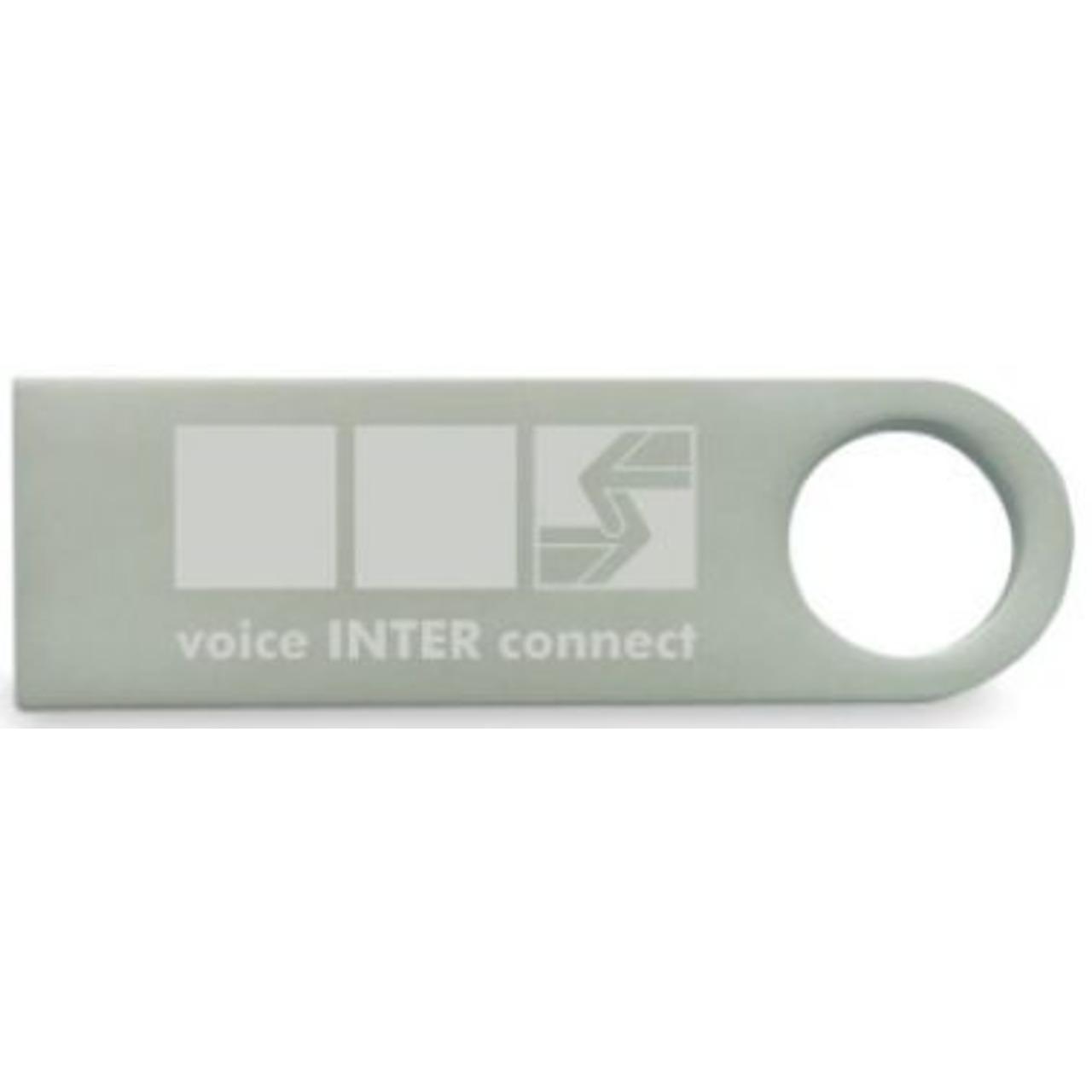 vicCONTROL go stick, Offline Sprachsteuerung
