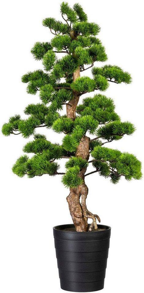 Kunstbonsai »Bonsai Kiefer« Bonsai Kiefer, Creativ green, Höhe 110 cm