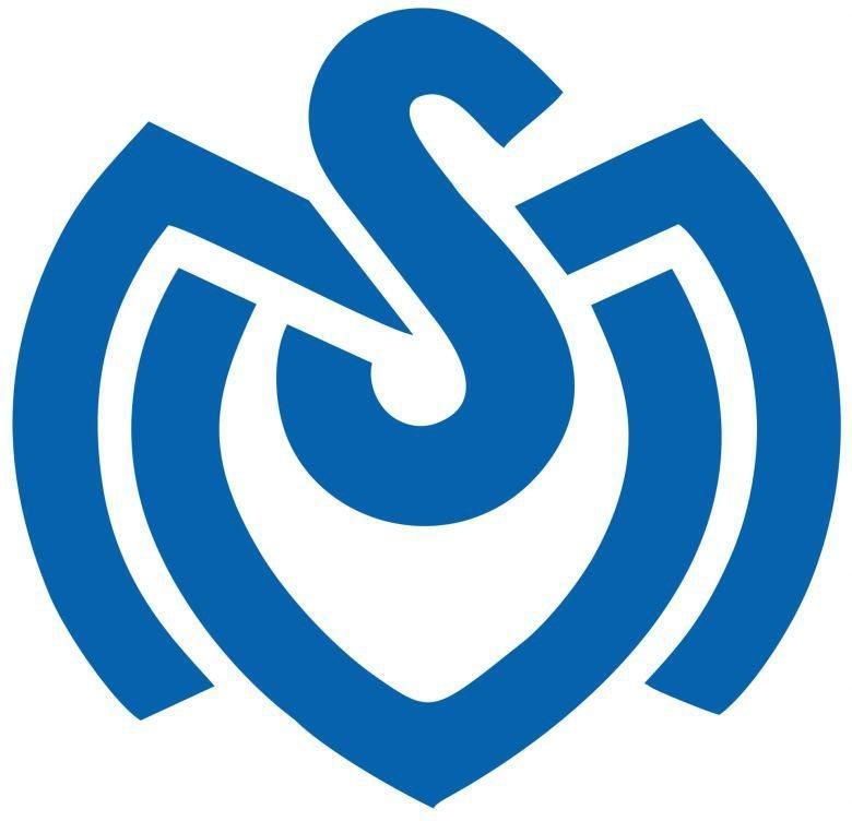 Wall-Art Wandtattoo »MSV Duisburg Retro Logo« (1 Stück)