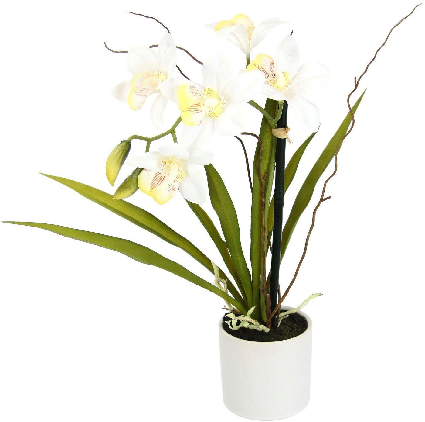Kunstorchidee »Orchidee«, I.GE.A., Höhe 33 cm, im Keramiktopf, beige