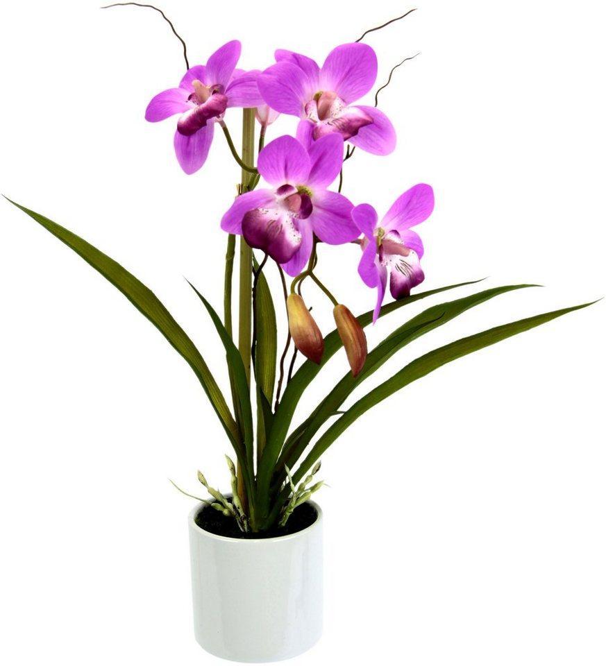 Kunstorchidee »Orchidee«, I.GE.A., Höhe 33 cm, im Keramiktopf, lila