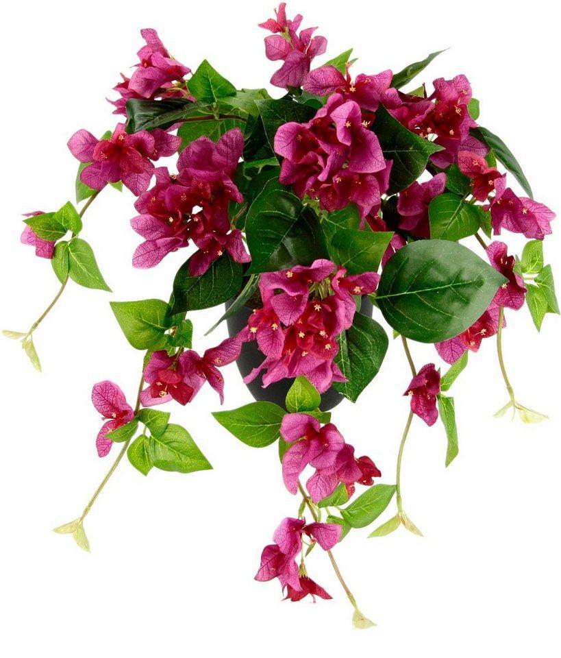 Kunstpflanze »Bougainvillea«, I.GE.A., Höhe 60 cm, im Kunststofftopf