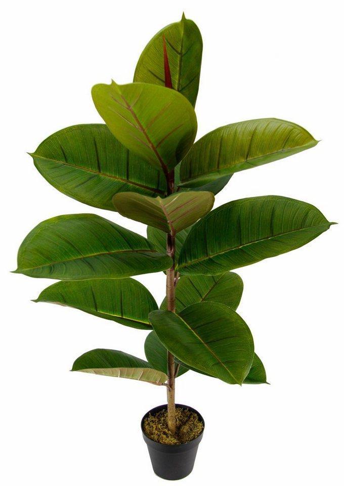 Künstliche Zimmerpflanze »Gummibaum«, I.GE.A., Höhe 84 cm