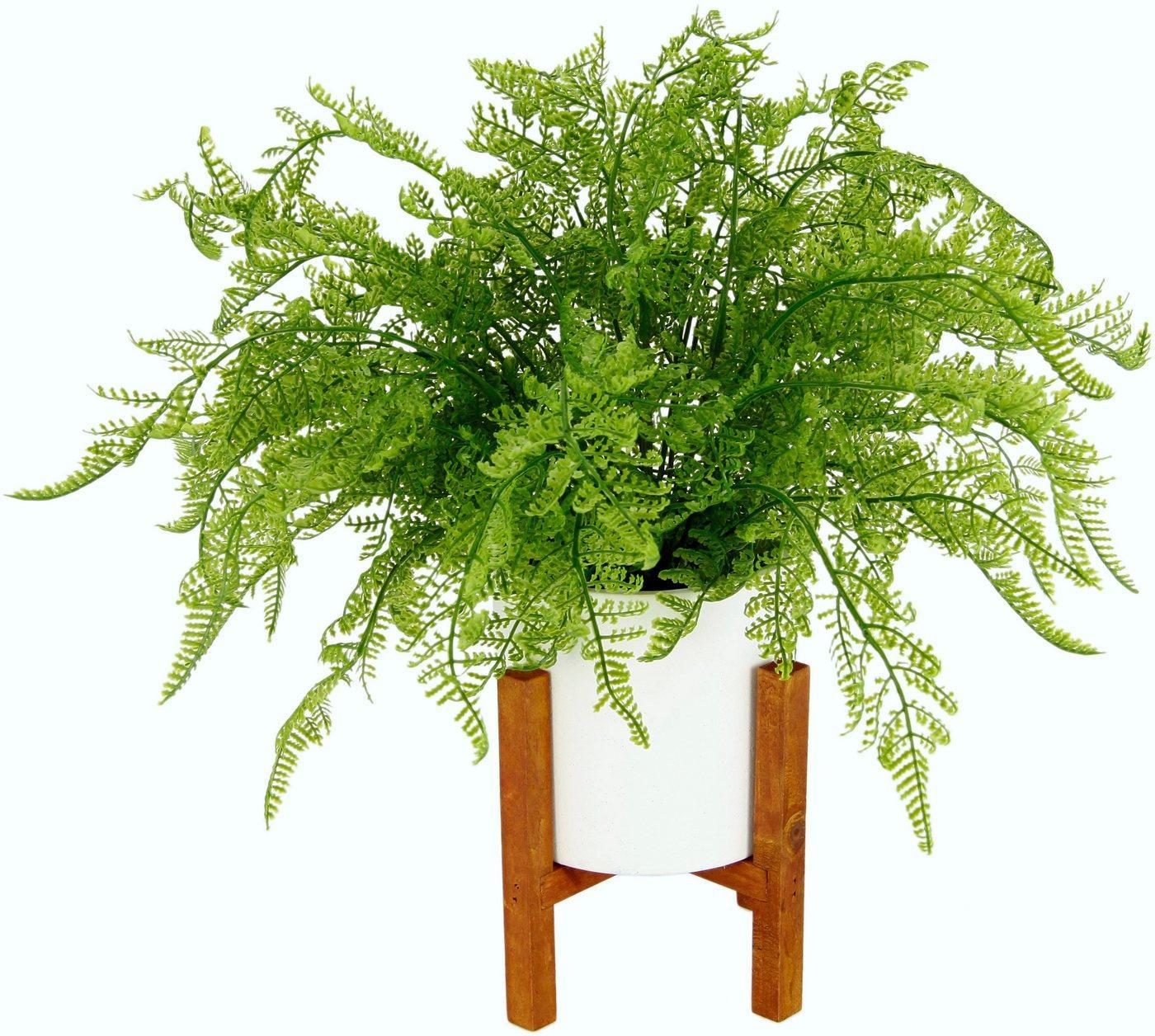Kunstpflanze »Wilhelmine« Farn, DELAVITA, Höhe 38 cm