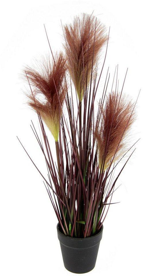 Kunstpflanze »Pampasgras«, I.GE.A., Höhe 49 cm, Im Topf
