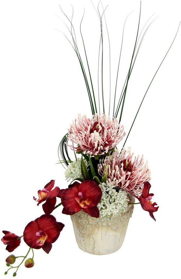 Kunstpflanze »Orchidee« Orchidee/Protea, I.GE.A., Höhe 31 cm