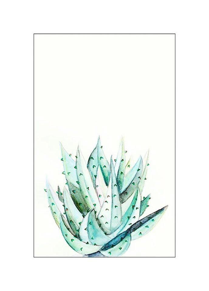 Komar Poster »Aloe Watercolor«, Pflanzen, Blätter, Höhe: 70cm
