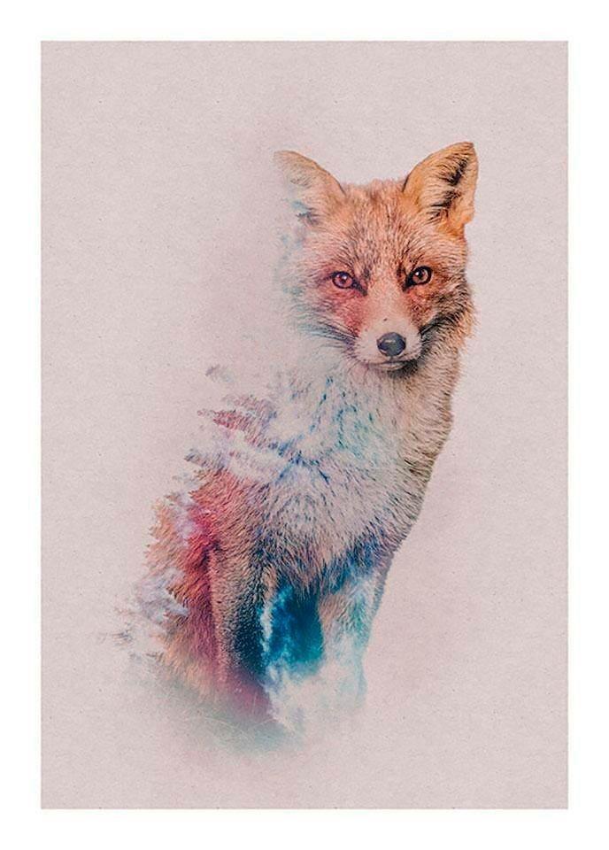 Komar Poster »Animals Forest Fox«, Tiere, Höhe: 40cm