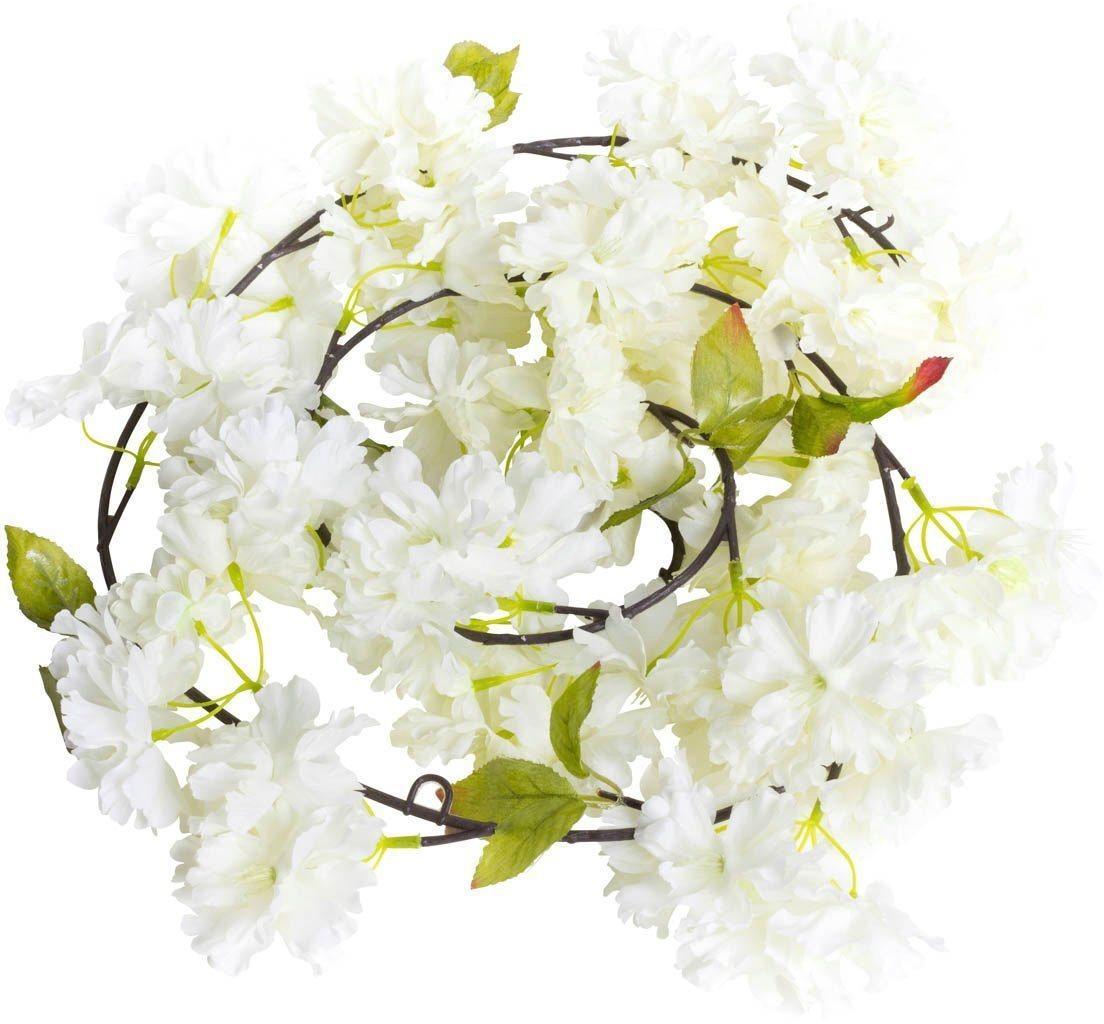 Kunstblume »Kirschblütengirlande« Kirschblüte, Botanic-Haus, Höhe 12 cm