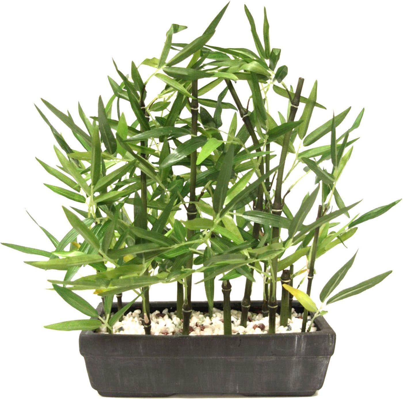 Kunstpflanze »Bambus«, I.GE.A., Höhe 45 cm, Mit Natursteinen