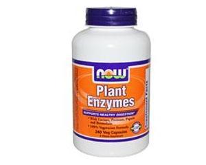 Plant Enzymes - 240 veg. Kapseln (41,61 EUR pro 100g)